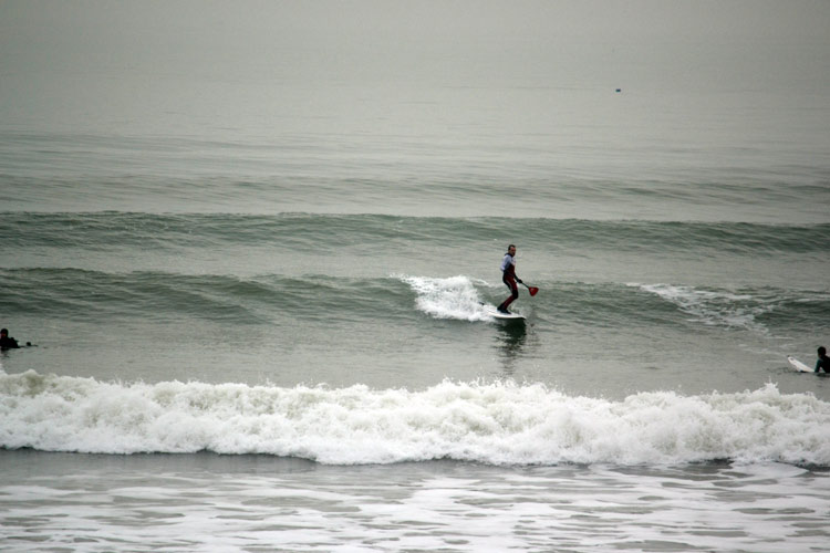 Surfing in Sussex
